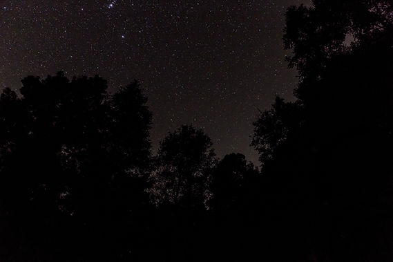 Cielo nocturno