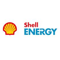 8. shell.jpg