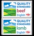 qsm_logos.png