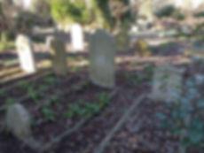 2. Stone in row.jpg