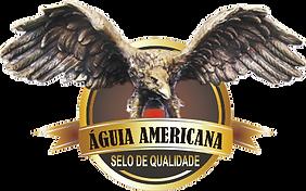 O Prêmio de Qualidade Águia Americana é uma homenagem aos Principais Destaques do Mundo Empresarial. Esse prêmio busca reconhecer, homenagear e divulgar a iniciativa privada, comprometida com o Desenvolvimento Sustentável com Responsabilidade Social.