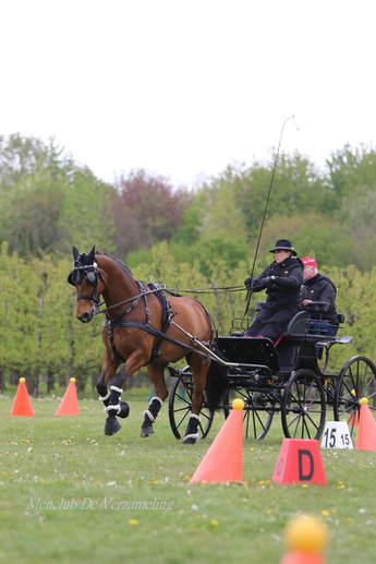 ZAM oefenwedstrijden 9 mei 209.jpg