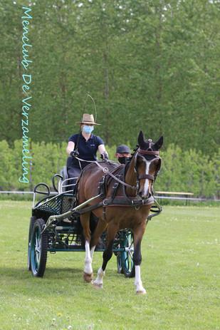 ZAM oefenwedstrijden 9 mei 1498.jpg