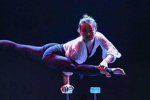 2021 Reunion - Shanghai Circus 12 Nov 21  7:30pm