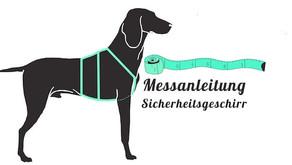 Hund für ein Sicherheitsgeschirr vermessen