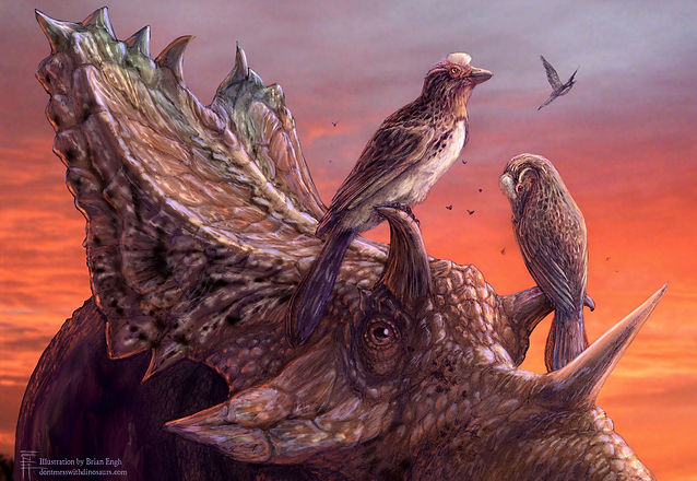 Paleoart by Brian Engh (dontmesswithdinosaurs.com)