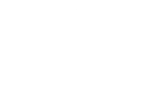 LOGO INSTITUTO RICARDO TANUS BRANCA.png