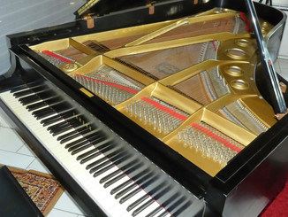 Yamaha C7 Conservatory