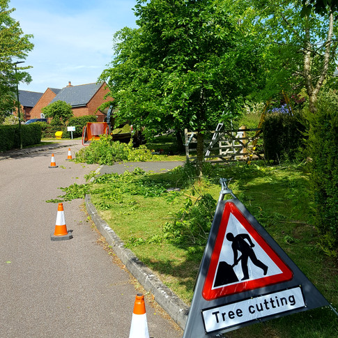 Tree Reductions in Kilve
