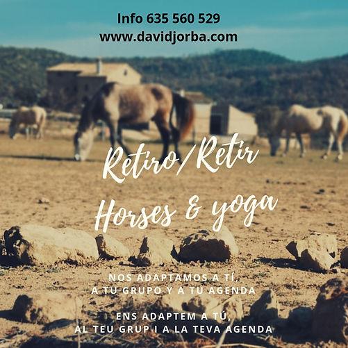 Retiro Yoga&horses.jpg