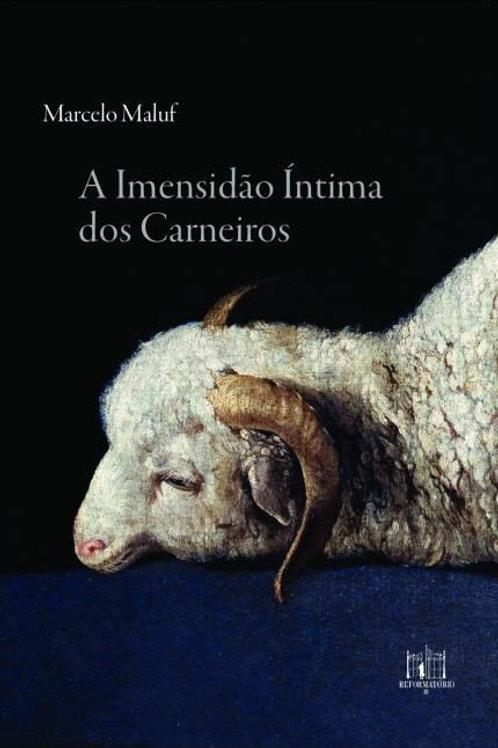 copy of A imensidão íntima dos carneiros