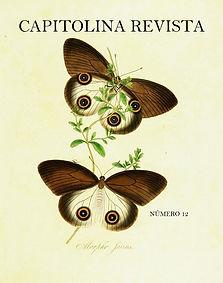 capa 12.jpg