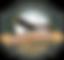 logo MONTE reload.png