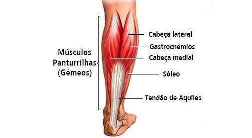 Panturrilha - Dra. Larissa Oliveira