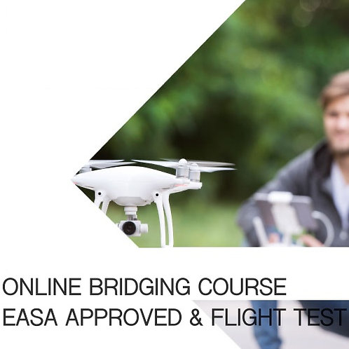 Online Bridging Course and Flight Test