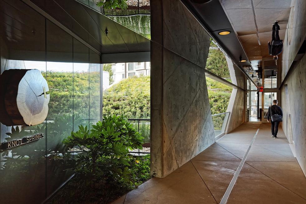 yard hallway.jpg