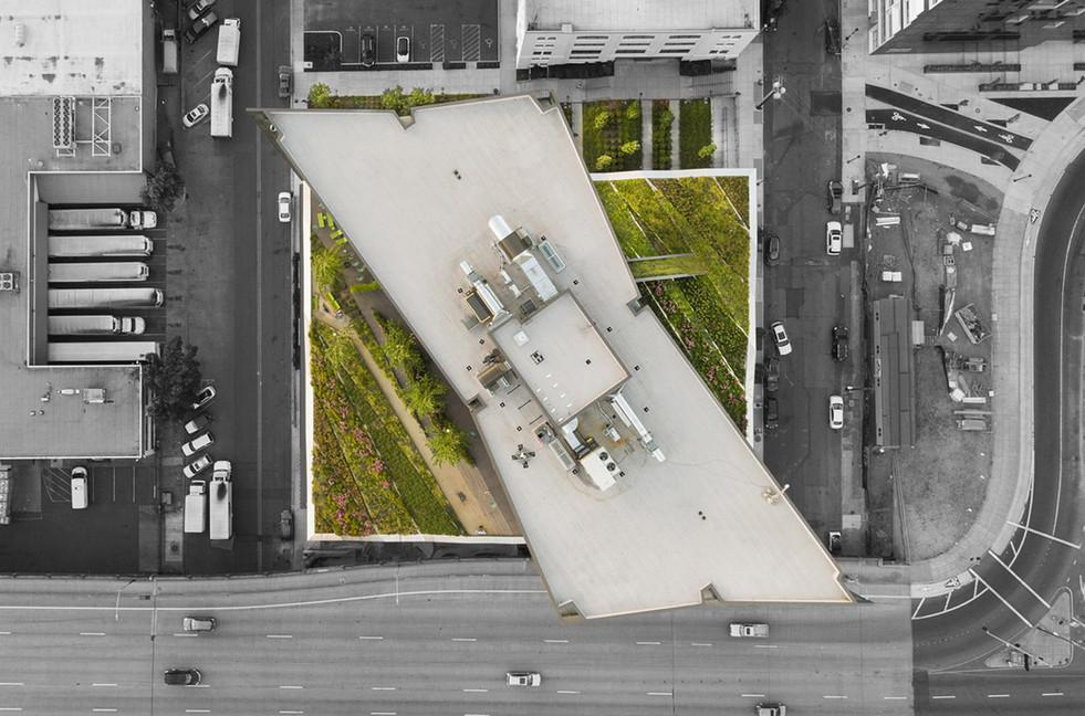 yard skylab.jpg