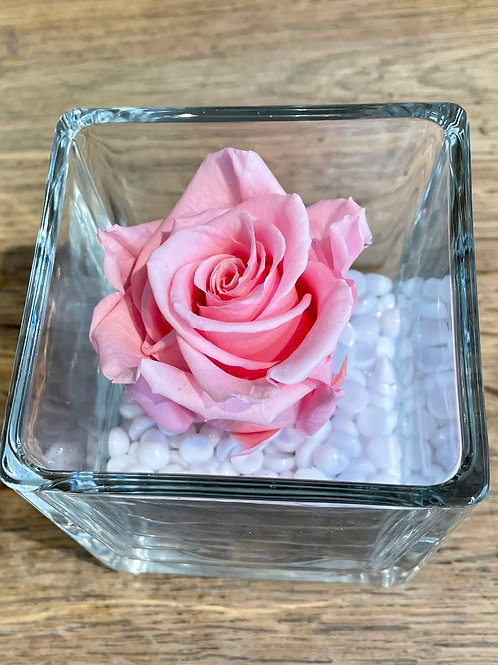 VERRINE ROSE ETERNELLE