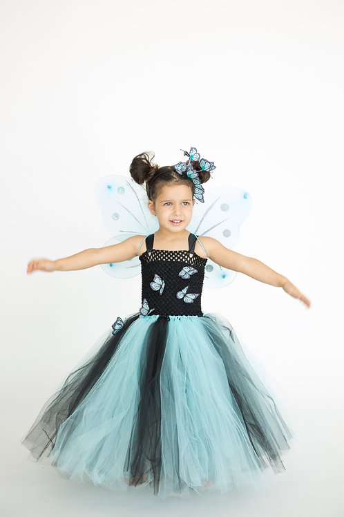Blue Butterfly for Kids