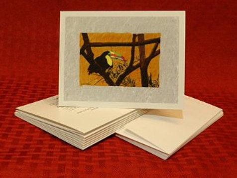 Toucan Note Cards