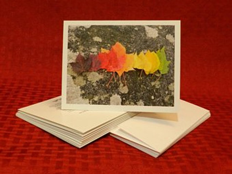 Leaf Rainbow Note Cards