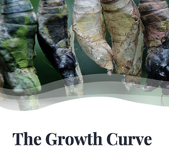 The Growth Curve