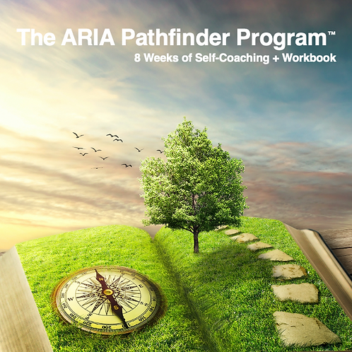 The ARIA Pathfinder Program™