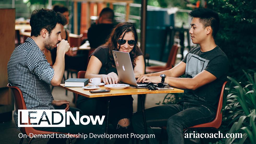 LEADNow On Demand Leadership Development