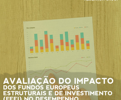 Impact Evaluation of the European Structural and Investment Funds (FEEI) on Companies Performance