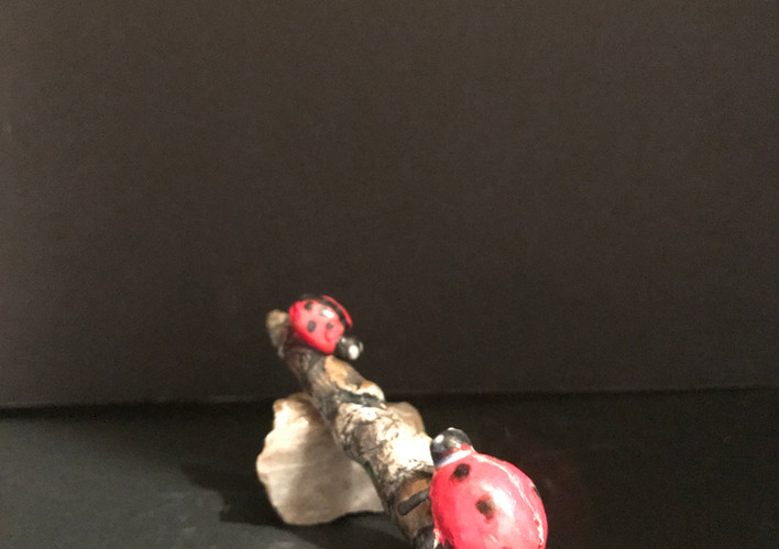 Two Lady Bugs, Sold 2018 at Nourish Louisa
