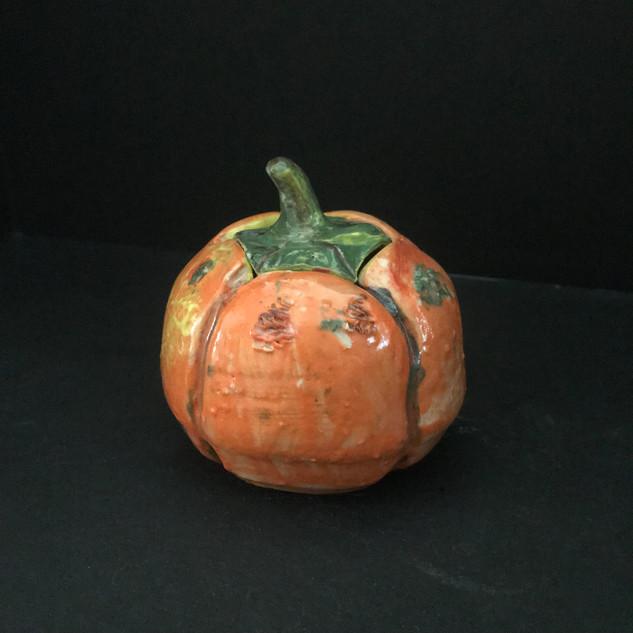 Pumpkin 1A.JPG