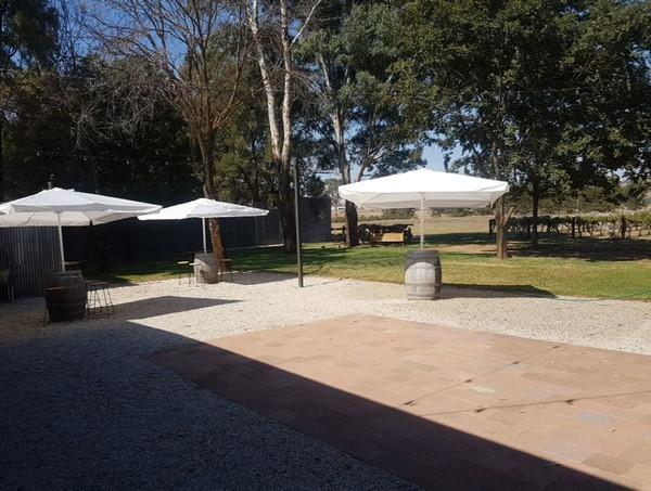 Wine Barrels and White Market Umbrella
