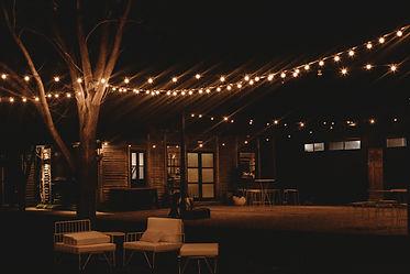 The Wild Vine, venue, Wagga Wagga