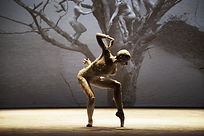 Companhia-de-Dança-Deborah-Colker_Dog-Wi