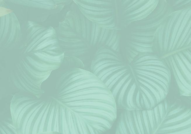 Leaf-01.jpg