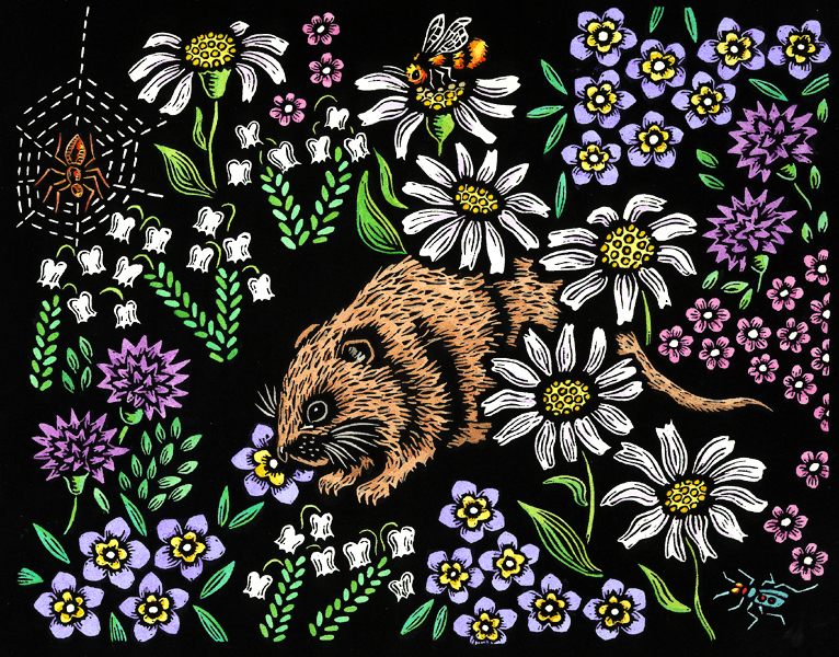Meadow Mouse