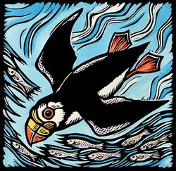 Water Wings II