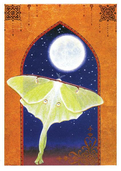 Luna | notecard