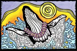 Whale Aloha