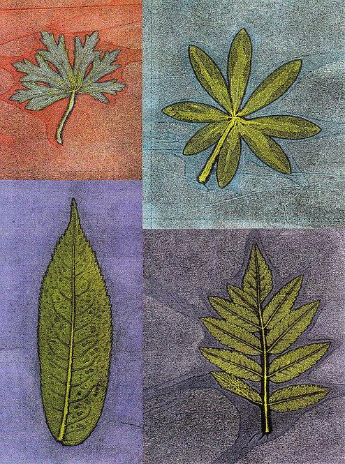 Leaf Four Square | mini-note
