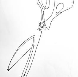 Draw Like a Bat