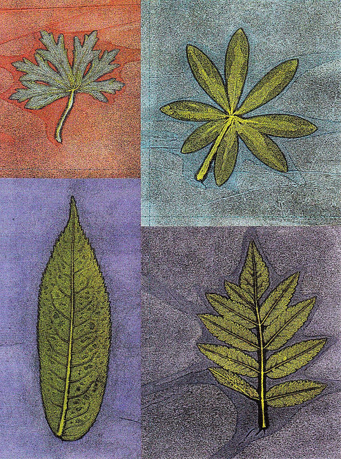 Leaf Four Square | postcard