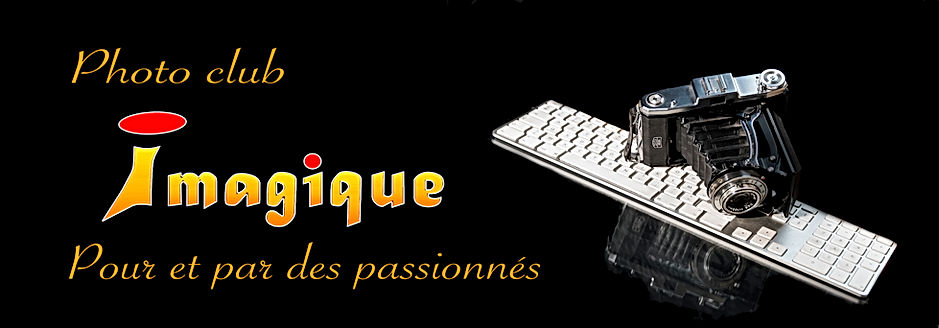 Bannière_du_site_Dominique___.jpg