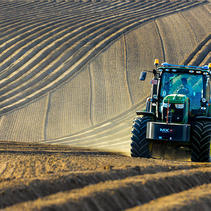 Nos cultivateurs