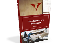 Ebook - Gino Vermeulen - Cover.png