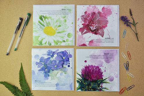 Floripunda 1 - SALE Pack of 4