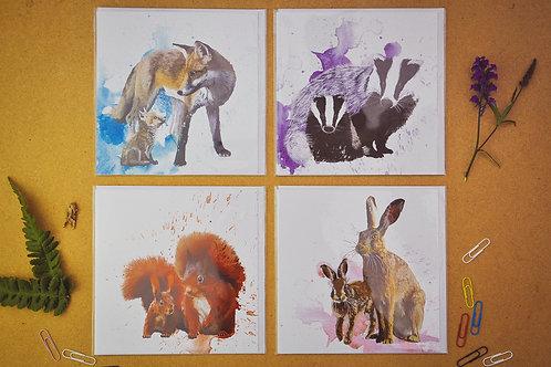 Wildlife 7 - SALE Pack of 4