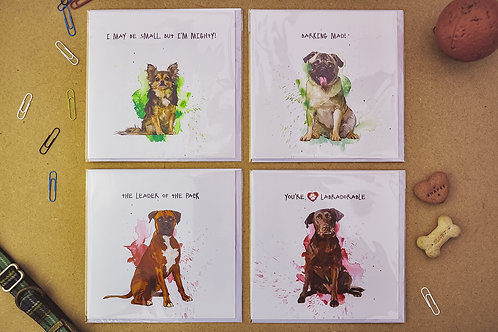 Paws 5 - SALE Pack of 4