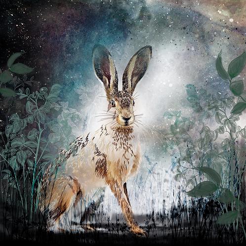 Spirit of a Hare at Dusk (Potato fields behind Rosebank Cottage) Unframed Print