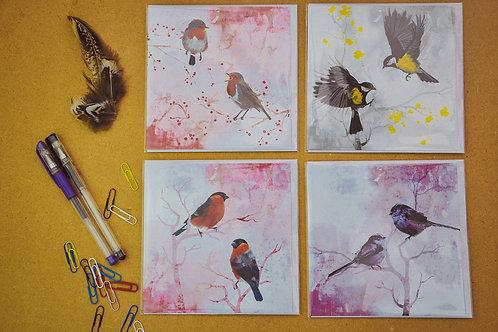 Wild Birds 4 - SALE Pack of 4